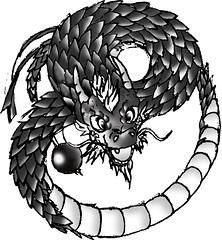 Qigong Yinyang Dragon (Qigong Chinese Health) Tags: qigong yin yang dragon chinese health