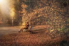Autumn (Bebetto) Tags: altedame serkankaynak kaynakfotografie park bank bäume laub blätter herbst autumn münchen alleine