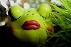 Froggy (francepar95) Tags: macromondaysceramic macro challenge week monday frog ceramic funny theme bokeh hmm
