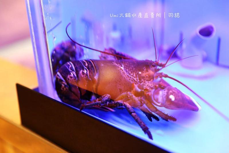 Umi火鍋水產直賣所-光復店013