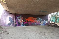 Graffiti @ Pont de Drize @ Walk along the Drize river @ Carouge @ Geneva (*_*) Tags: january hiver winter 2020 europe switzerland geneva suisse lancy hiking walk marche hike carouge trail geneve suisseromande drize river riviere sony rx100vii m7 nature graffiti mural
