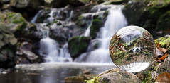 This Earth (Parchman Kid (Jerry)) Tags: morgenbachtal glass woods forest germany stream creek falls water sony a6500 parchmankid jerry burchfield ambiance ambience mood ambient ambiant moody atmosphere