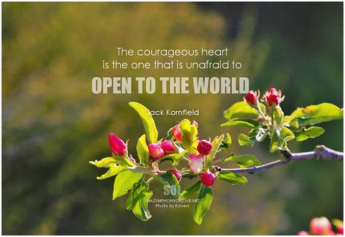 Jack Kornfield The courageous heart is the one that is unafraid to open to the world