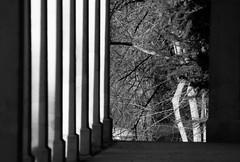 Pump Room (MarkusR.) Tags: d723765mono mrieder markusrieder stuttgart badcannstatt kurpark city stadt stadtansichten townscape spapark park parkanlage fotospaziergang photostroll germany deutschland nikon nikond7200 stadtteil district partofthecity pumproom wandelhalle building gebäude monochrome sw bw