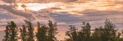 _Y2U0767-69.0713.Cửa Lò.Vinh.Nghệ An (hoanglongphoto) Tags: asia asian northcentralcoast northcentralvietnam phongcảnhthiênnhiên landscape beach cửalò cualobeach canoneos1dx vietnam naturelandscape sky thiênnhiên bầutrời vinhcity nature hoanglongphoto boat scenery vietnamlandscape vietnamscenery cualolandscape clouds sunrise sea cualosea trees panorama 1x3 canon nghêan vinh biểncửalò bìnhminh mây hàngcâyphilao water nước waterscapes biển canonef70200mmf28lisiiusm bãibiểncửalò thuyền casuarina manycasuarina câyphilao topofthetree ngọncây