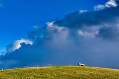 Hill... (r.wacknitz) Tags: hügel nordharz liebenburg wintermood clouds cloudscapes sunlight january niedersachsen lowersaxony nikon tamron18200 luminar18