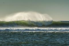 Terrain vague (claude dequidt) Tags: mer vague rouleau