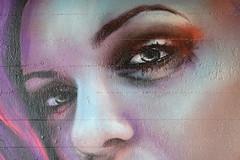 Eye @ Graffiti @ Pont de Drize @ Walk along the Drize river @ Carouge @ Geneva (*_*) Tags: january hiver winter 2020 europe switzerland geneva suisse lancy hiking walk marche hike carouge trail geneve suisseromande drize river riviere sony rx100vii m7 nature graffiti mural