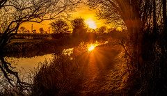 Winter Sunshine (2) (thepeterleigh) Tags: canal sunshine sun reflection landscape leicestershire tree water boat towpath fujifilm fuji xt2
