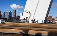 Rotterdam - Erasmusbrug (Tobias Dander) Tags: tobiasdander galaxys7 rotterdam rotjeknor holland zuidholland erasmusbrug bridge architecture urban urbanlife streetphotography