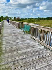 Willington environmental nature area (LarryJay99 ) Tags: happybenchmonday benches seats boardwalks nature wellington florida green wetlands