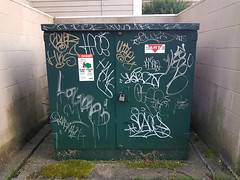 Tagged Utility Box (Indrid__Cold) Tags: utilitybox utilityboxes utilities power electrical powerbox powerboxes graffiti tagged tags tagging tag urban novascotia halifax utility box electricity green paint ink drips dripping drip canada