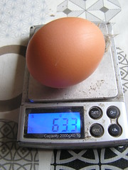 Chicken Coop Egg No 20 63.3g - 20-01-2020 (Lord Inquisitor) Tags: eggs egg brown browneggs browneggs2020 heneggs heneggs2020 chickencoopeggs coop chicken eggweights scale