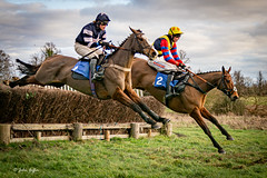 Ampton Point-to-point-2346 (johnboy!) Tags: ampton horseracing horses january2020 nikond7100 pointtopoint tamron2470mm