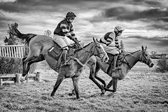 Ampton Point-to-point- (johnboy!) Tags: ampton horseracing horses january2020 nikond7100 pointtopoint tamron2470mm