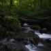 Svaneti's Verdant Nature