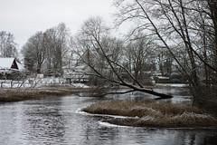 Pirita jõgi (Jaan Keinaste) Tags: pentax k3 pentaxk3 eesti estonia vaskjala piritajõgi jõgi river vesi water smcpentaxamacro2850