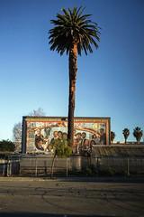 18th St, West Oakland (icki) Tags: ca california december2019 westoakland cellphonephoto mural nopeople palmtree skidmarks street