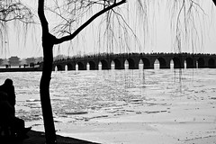 BEYOND THE WINDOW (VALERY....) Tags: beijing 2009 canon