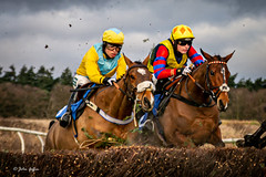 Ampton Point-to-point-2333-2 (johnboy!) Tags: ampton horseracing horses january2020 nikond7100 pointtopoint tamron2470mm