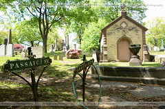 Passaic and Greenbrier (ficktionphotography) Tags: mtpleasasntcemetery cemetery graves tombs mausoleums newarknj newjersey explore