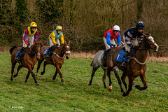 Ampton Point-to-point-2342 (johnboy!) Tags: ampton horseracing horses january2020 nikond7100 pointtopoint tamron2470mm