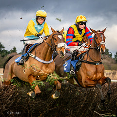 Ampton Point-to-point-2334 (johnboy!) Tags: ampton horseracing horses january2020 nikond7100 pointtopoint tamron2470mm