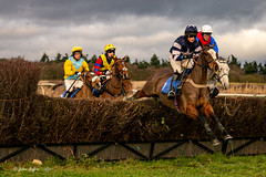 Ampton Point-to-point-2332 (johnboy!) Tags: ampton horseracing horses january2020 nikond7100 pointtopoint tamron2470mm