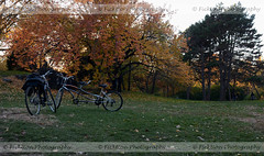Bike Meetings (ficktionphotography) Tags: bicycles centralpark newyorkcity newyork fall autumn explore