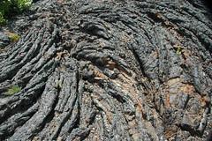 Pahoehoe basalt lava (North Crater Flow, Holocene, 2.2 ka; Craters of the Moon Lava Field, Idaho, USA) 6 (James St. John) Tags: pahoehoe basalt lava north crater flow lavas holocene craters moon field national monument idaho snake river plain yellowstone hotspot track volcanism volcanic