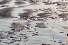 Patterns in the sand (Bridgetony) Tags: sussex blue coastline golden patterns sand waves