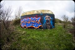 LUNETTES 3D (nARCOTO) Tags: blockhaus normandie normandy graffiti graff graffitis