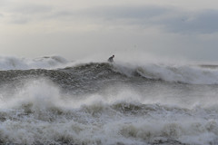 Glory Storm in Barcelona (Santini1972) Tags: storm barcelona sea surf coast sky waves mediterranean nikond7500 nature