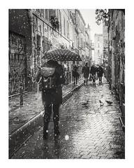 It's not because we photograph reality that we show reality-S. Bassignac (streetspirit13) Tags: snow montage streetphotographer streetpassionaward street bnwphotographer bnwdemands bnwphotography bnwstreetphoto blackandwhite blackwhite noiretblanc blancoynegro marseille bw