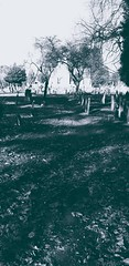 I do I do I do believe in spooks (BedBrochFlick) Tags: graveyard england uk 2020 mmxx wintertime sunshine church churchyard lonely alone