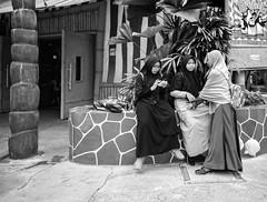 en passant par Singapour (Jack_from_Paris) Tags: l1012696bw leica m type 240 10770 leicaelmaritm28mmf28asph 28mm 11606 dng mode lightroom capture nx2 rangefinder télémétrique blackandwhite monochrome bw noiretblanc noir et blanc monochrom wide angle street singapour asie sentosa parc attraction chaleur singapore candid portrait people trois 3 women voile