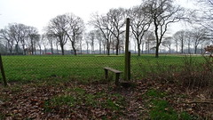 Klompenpad (Cor D.) Tags: walksinthenetherlands wandelingeninnederland walks klompenpad klompenpadennl otterlo veluwe gelderland netherlands nederland gemeenteede eeskooterpad