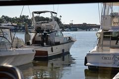 DSC_0002 (tracie7779) Tags: newportbeach boats harbor