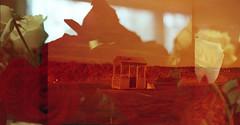 img292up1 (ToMeKKKK) Tags: film filmphotography filmisnotdead filmshooterscollective onfilm fujifilm buyfilmnotmegapixels 35mmfilm fuji fujicolor fujichrome analog analogphoto analogue analoguepeople pentax pentaxk1000 mir1v doubleexposure multipleexposure