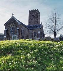 Ashcombe church and Snowdrops (pike head) Tags: uk england southdevon devon omd southwest olympus snowdrops church ashcombe