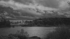 _IMG4338_Nik_DxO (Douglas Jarvis) Tags: landscape water lake ogden yorkshire 50mm k1 pentax mono monochrome