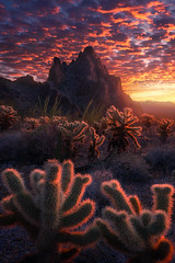 Imagine the Fire (arpandasphotography) Tags: landscape nature travel sunset arizona usa mountain art artist color outdoor camping hiking beautiful cloud clouds photography photoshop cactus desert winter