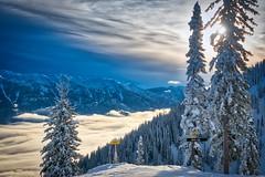 DSC03184P (vladm2007) Tags: fernie bc canada alpine resort ski snowboard winter mountains snow