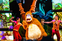 I'm the King of the Swingers (Jared Beaney) Tags: canon6d canon travel photography photographer usa america anaheim california disneyland disney theme themed park parks resort resorts amusement mickeyandthemagicalmap show entertainment musical kinglouie character characters stage