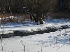 Sixteen Mile Creek 5 (D. S. Hałas) Tags: halas hałas canada ontario haltonregion haltoncounty oakville sixteenmilecreek