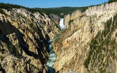Lower Yellowstone Falls (Curtis Lannom) Tags: nationalpark vacation wyoming yellowstone nps teton nature