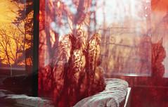 img291 (ToMeKKKK) Tags: film filmphotography filmisnotdead filmshooterscollective onfilm fujifilm buyfilmnotmegapixels 35mmfilm fuji fujicolor fujichrome analog analogphoto analogue analoguepeople pentax pentaxk1000 mir1v doubleexposure multipleexposure