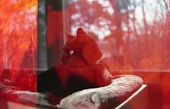 img281 (ToMeKKKK) Tags: film filmphotography filmisnotdead filmshooterscollective onfilm fujifilm buyfilmnotmegapixels 35mmfilm fuji fujicolor fujichrome analog analogphoto analogue analoguepeople pentax pentaxk1000 mir1v doubleexposure multipleexposure