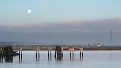 the bay area (bgwashburn) Tags: san francisco bay redwood city harbor pier moon oracle