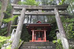 Nikkō - Shrines and Temples of Nikkō (CATDvd) Tags: nikond7500 日本国 日本 stateofjapan nippon niponkoku nihonkoku nihon japón japó japan estatdeljapó estadodeljapón catdvd davidcomas httpwwwdavidcomasnet httpwwwflickrcomphotoscatdvd july2019 kantōregion kantōchihō regiódekantō regióndekantō 関東地方 prefecturadetochigi tochigiken 栃木県 tochigiprefecture nikkō 日光市 nikkōshi santuarisitemplesdenikkō santuariosytemplosdenikkō shrinesandtemplesofnikkō architecture arquitectura building edifici edificio temple templo twop aasia